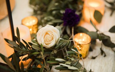Enchanted Secret Garden Springs Preserve Wedding