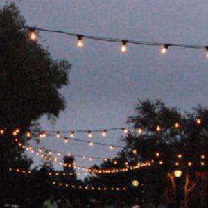Cosmopolitan Bistro Lighting Area 1