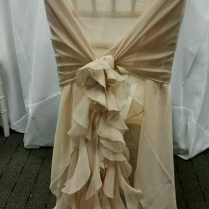 Champagne Curly Willow Chair Wrap