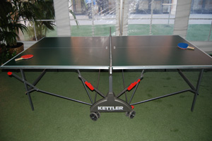 GAME PING PONG TABLE